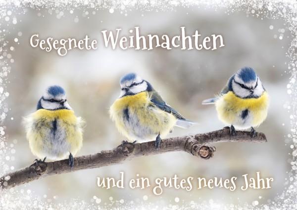 Postkarte WH Drei Meisen