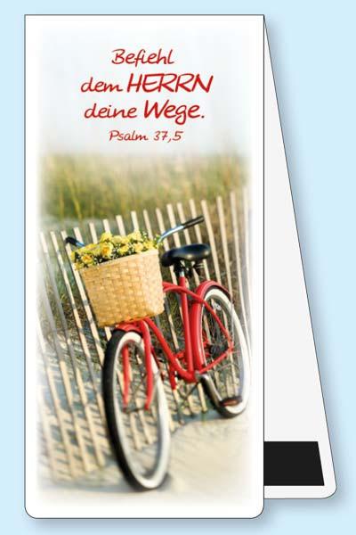 MLZ Fahrrad