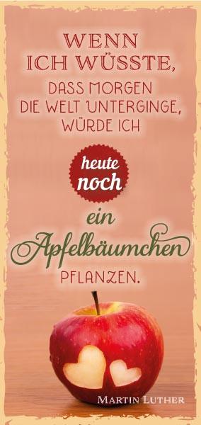MLZ Wenn ich wüsste/Apfelbäumchen