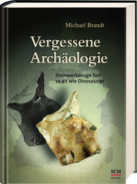Vergessene Archäologie Steinwerkzeuge fast so alt wie Dinosaurier