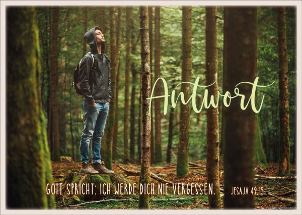 Postkarte Antwort Wald