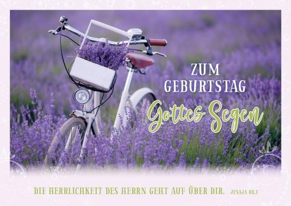 Postkarte Geb. Fahrrad im Lavendelfeld