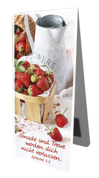 Magnetlesezeichen Erdbeeren
