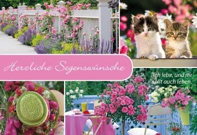 Minikarten Katzen/Rosen