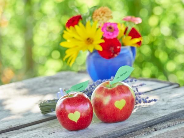 Äpfel mit Herz vom Bodensee